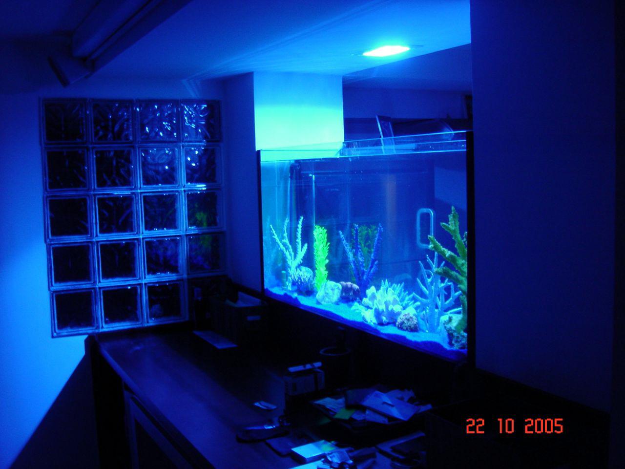 Contemporain for Eclairage interieur piscine