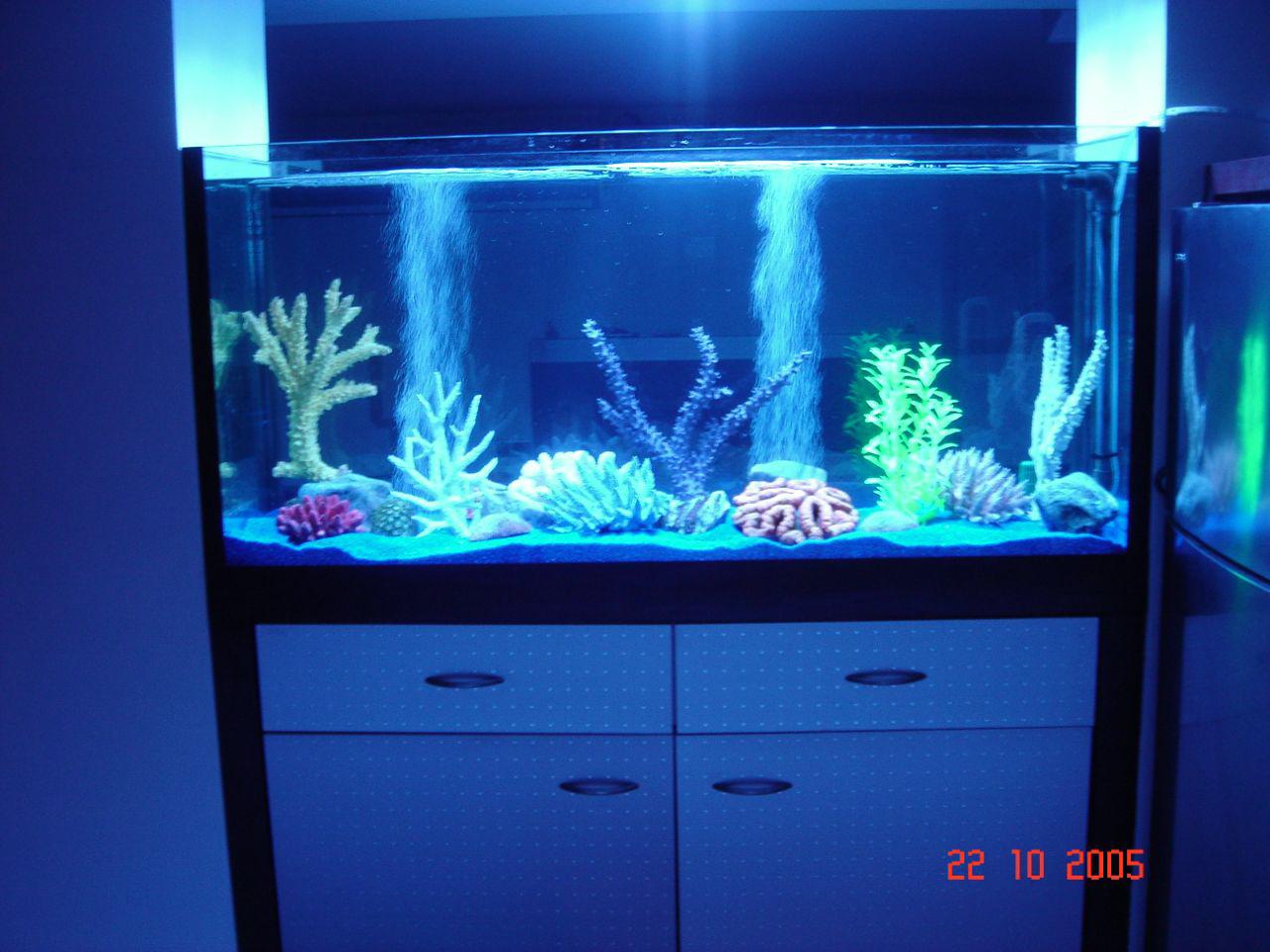 D coration faux aquarium - Decoration pour aquarium d eau douce ...